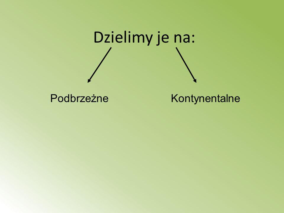 Niziny Polski Nizina Wielkopolska *największym miastem jest Kalisz *występują znaczne złoża gazu ziemnego i węgla brunatnego *Krajobraz równinny wybitnie rolniczy urozmaicony wysoczyznami moreny dennej i dolinami rzek