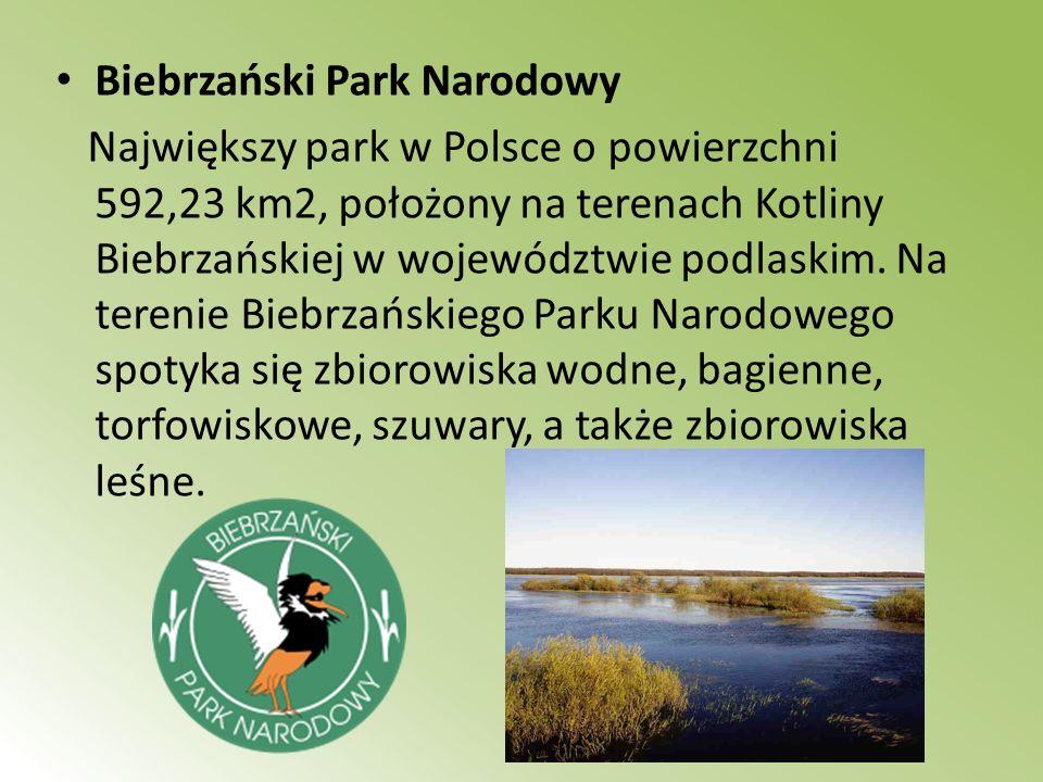 Biebrzański Park Narodowy Największy park w Polsce o powierzchni 592,23 km2, położony na terenach Kotliny Biebrzańskiej w województwie podlaskim. Na t