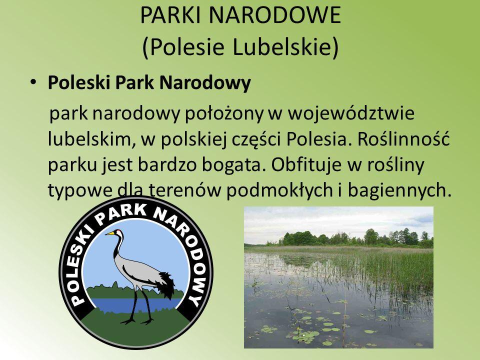 PARKI NARODOWE (Polesie Lubelskie) Poleski Park Narodowy park narodowy położony w województwie lubelskim, w polskiej części Polesia. Roślinność parku