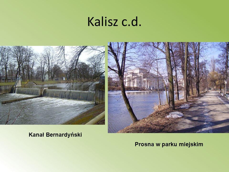 Kalisz c.d. Kanał Bernardyński Prosna w parku miejskim