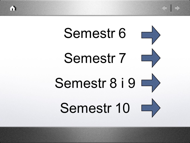 Semestr 6 Semestr 7 Semestr 8 i 9 Semestr 10