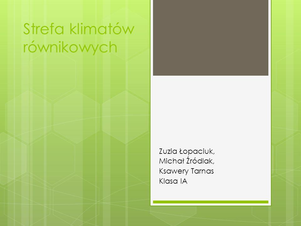 Strefa klimatów równikowych Zuzia Łopaciuk, Michał Źródlak, Ksawery Tarnas Klasa IA