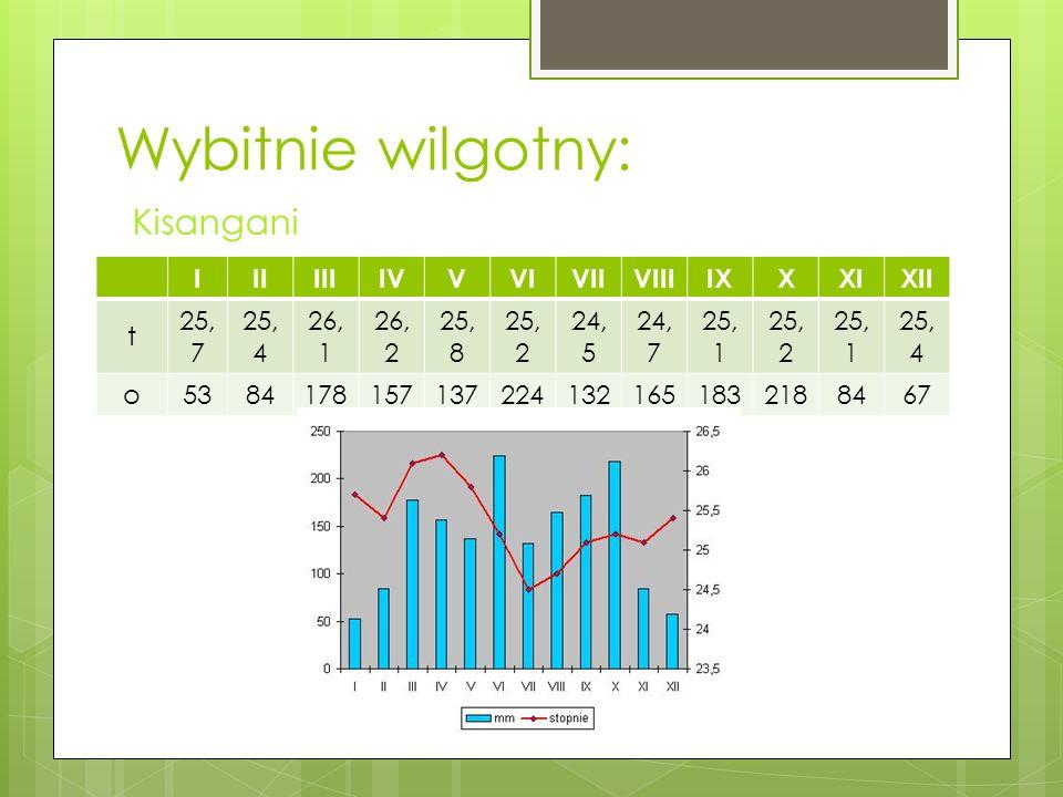 Wybitnie wilgotny: Kisangani 0°26N, 25°14E 418 m n.p.m.