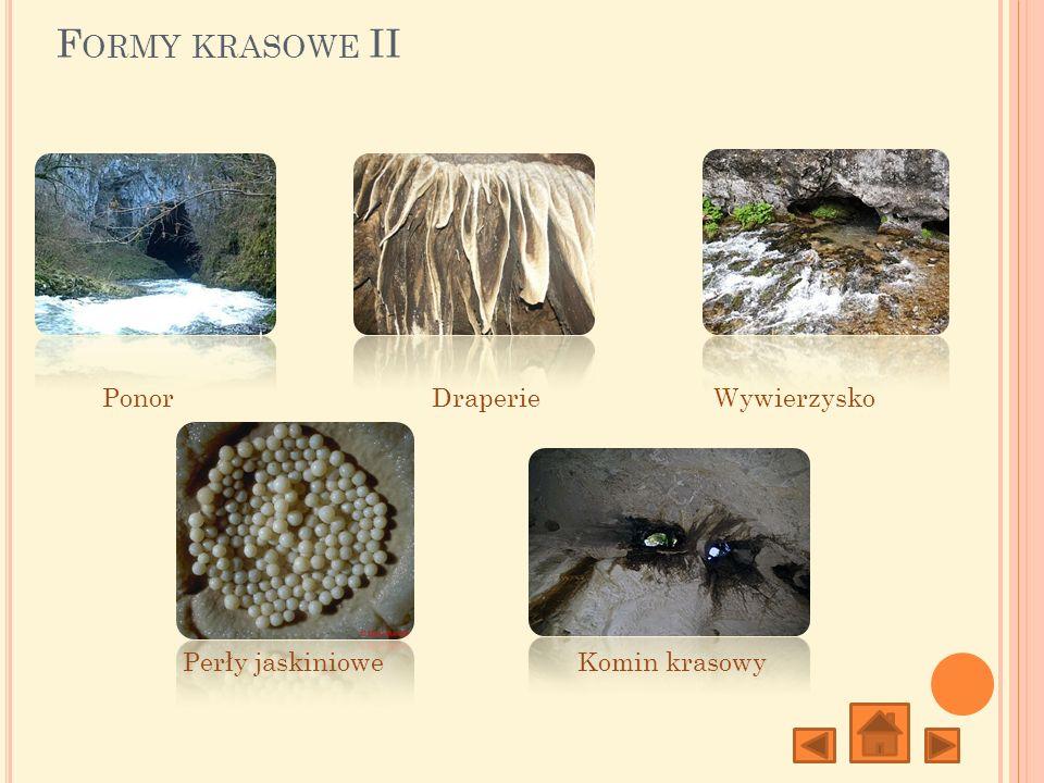 F ORMY KRASOWE III Lejek krasowyUwał PoljeŻłobek i żebro krasowe Ostaniec krasowy (Mogot, hum)