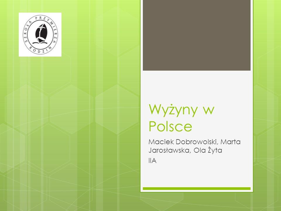 Wyżyny w Polsce Maciek Dobrowolski, Marta Jarosławska, Ola Żyta IIA
