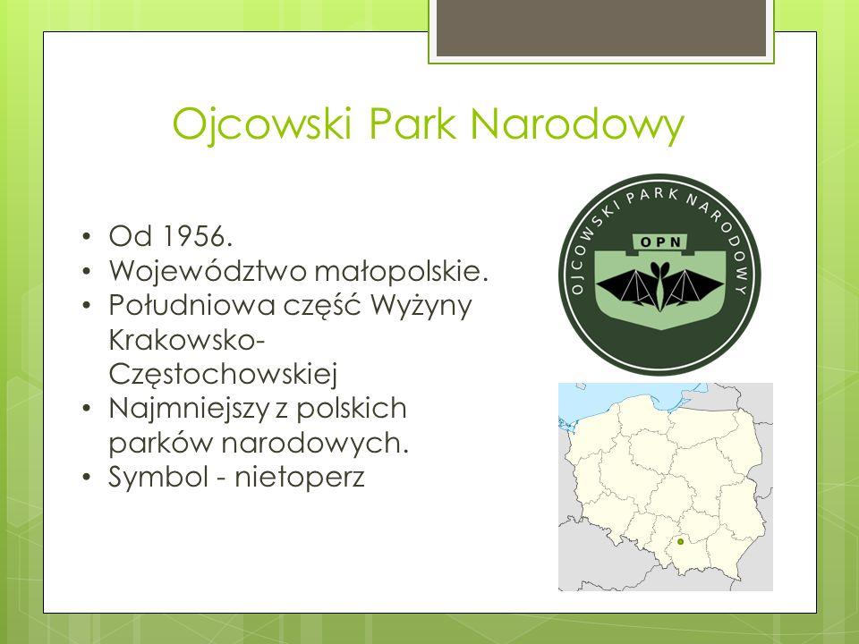 Ojcowski Park Narodowy Od 1956. Województwo małopolskie. Południowa część Wyżyny Krakowsko- Częstochowskiej Najmniejszy z polskich parków narodowych.