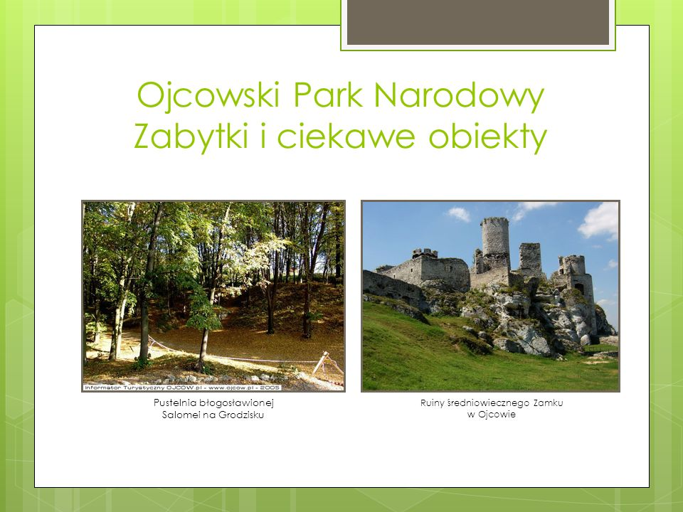 Ojcowski Park Narodowy Zabytki i ciekawe obiekty Pustelnia błogosławionej Salomei na Grodzisku Ruiny średniowiecznego Zamku w Ojcowie