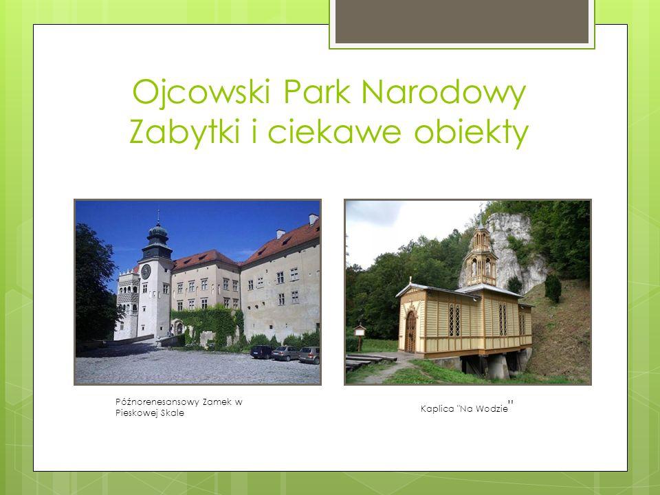Ojcowski Park Narodowy Zabytki i ciekawe obiekty Późnorenesansowy Zamek w Pieskowej Skale Kaplica
