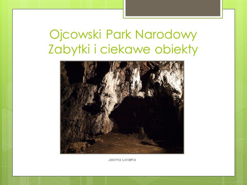 Ojcowski Park Narodowy Zabytki i ciekawe obiekty Jaskinia Łokietka