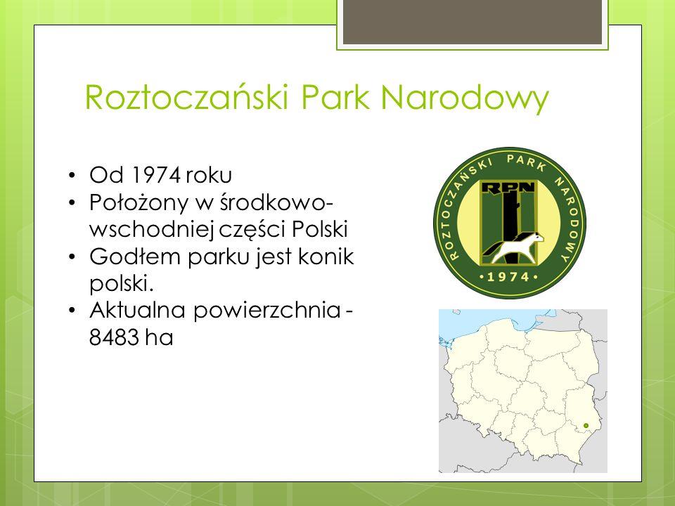 Roztoczański Park Narodowy Od 1974 roku Położony w środkowo- wschodniej części Polski Godłem parku jest konik polski. Aktualna powierzchnia - 8483 ha