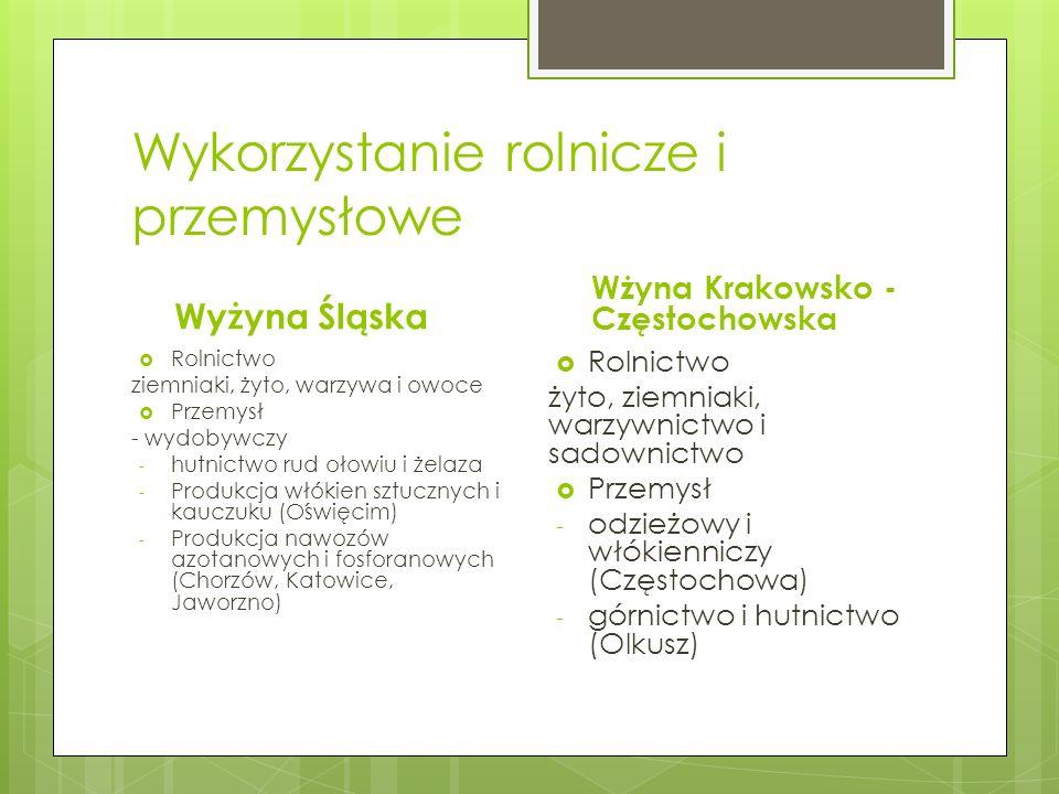 Wykorzystanie rolnicze i przemysłowe Wyżyna Śląska Rolnictwo ziemniaki, żyto, warzywa i owoce Przemysł - wydobywczy - hutnictwo rud ołowiu i żelaza -
