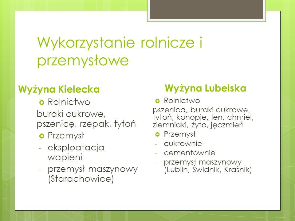 Wykorzystanie rolnicze i przemysłowe Wyżyna Kielecka Rolnictwo buraki cukrowe, pszenicę, rzepak, tytoń Przemysł - eksploatacja wapieni - przemysł masz