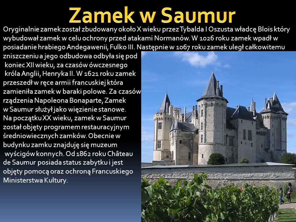 Zamek został zaprojektowany, zbudowany a później zamieszkany przez króla Anglii, Henryka II oraz jego syna Ryszarda Lwie Serce.