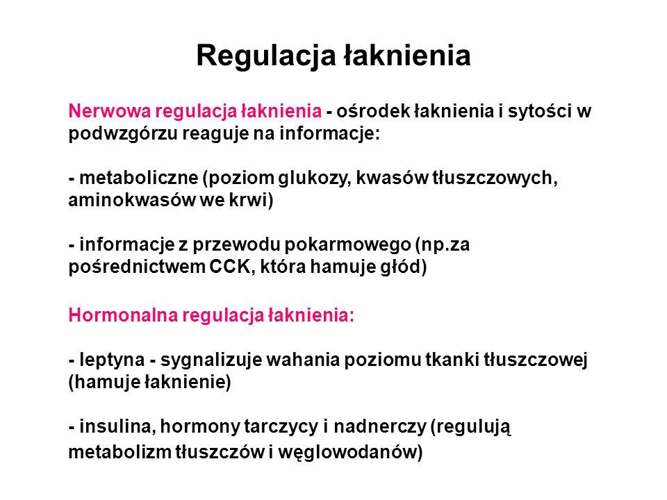 Regulacja łaknienia Nerwowa regulacja łaknienia - ośrodek łaknienia i sytości w podwzgórzu reaguje na informacje: - metaboliczne (poziom glukozy, kwas