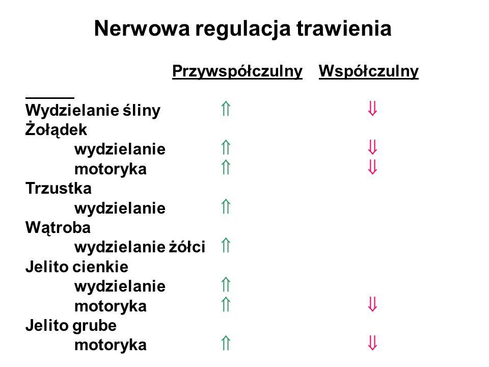 Nerwowa regulacja trawienia Przywspółczulny Współczulny Wydzielanie śliny Żołądek wydzielanie motoryka Trzustka wydzielanie Wątroba wydzielanie żółci