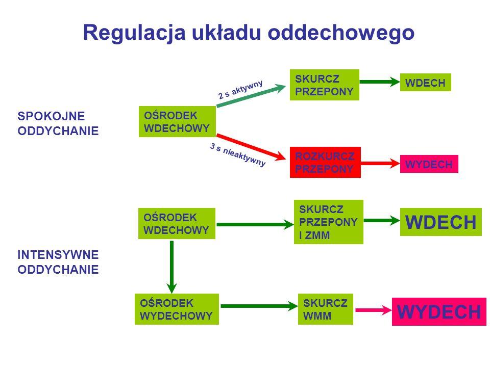 Regulacja układu oddechowego Regulacja oddychania - pO 2 i pCO 2 krwi tętniczej Zmiany pO 2 i pCO 2 - wynik zmian tempa metabolizmu Regulacja oddychania - dostosowanie wentylacji do tempa metabolizmu Główne bodźce chemiczne - końcowe produkty oddychania: CO 2, H +, a także O 2, których poziom jest rejestrowany przez chemoreceptory tętnicze: kłębki szyjne i aortalne oraz chemowrażliwe obszary mózgowia (w rdzeniu przedłużonym)