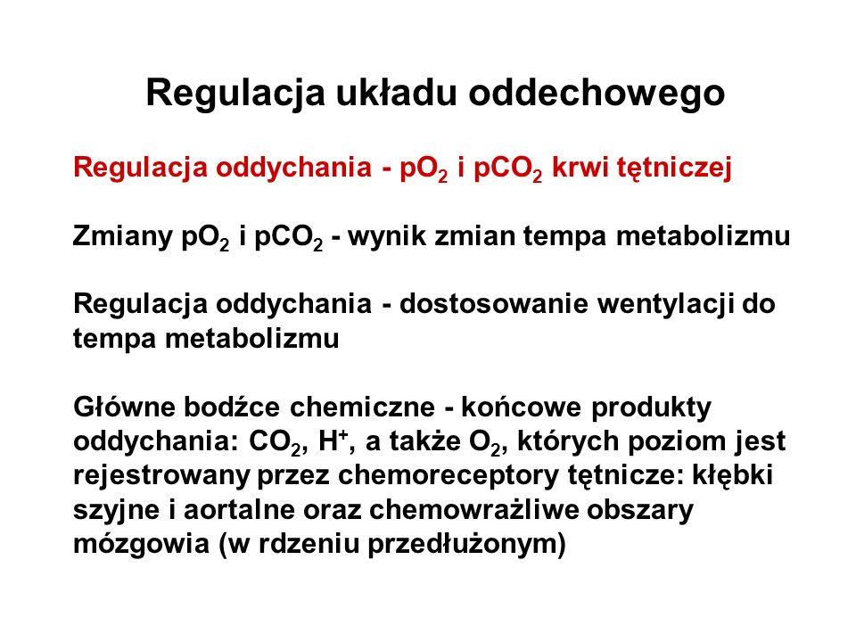 Regulacja układu oddechowego Regulacja oddychania - pO 2 i pCO 2 krwi tętniczej Zmiany pO 2 i pCO 2 - wynik zmian tempa metabolizmu Regulacja oddychan