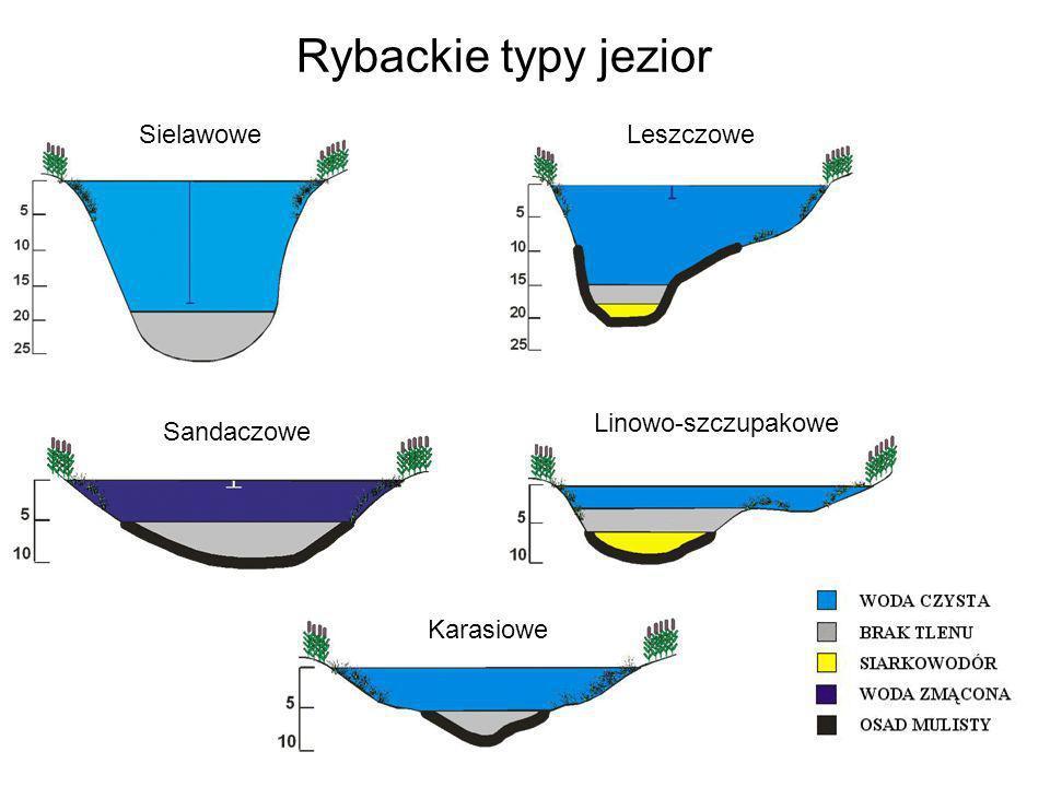 Rybackie typy jezior SielawoweLeszczowe Sandaczowe Linowo-szczupakowe Karasiowe