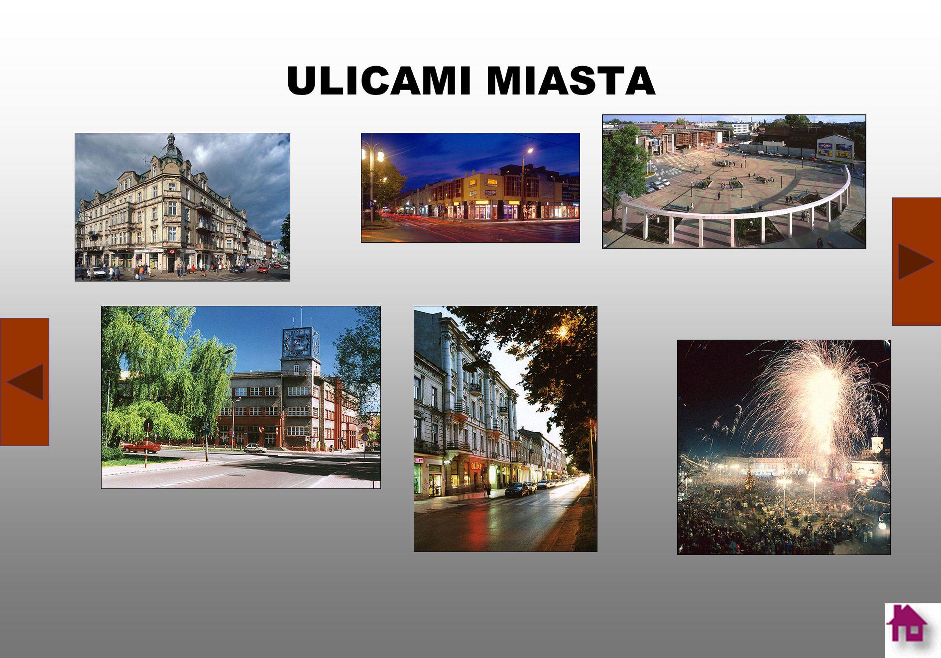 HISTORIA Dzisiejsza Częstochowa jest ćwierćmilionowym, ważnym ośrodkiem gospodarczym, kulturalnym, usługowym i administracyjnym o znaczeniu regionalny