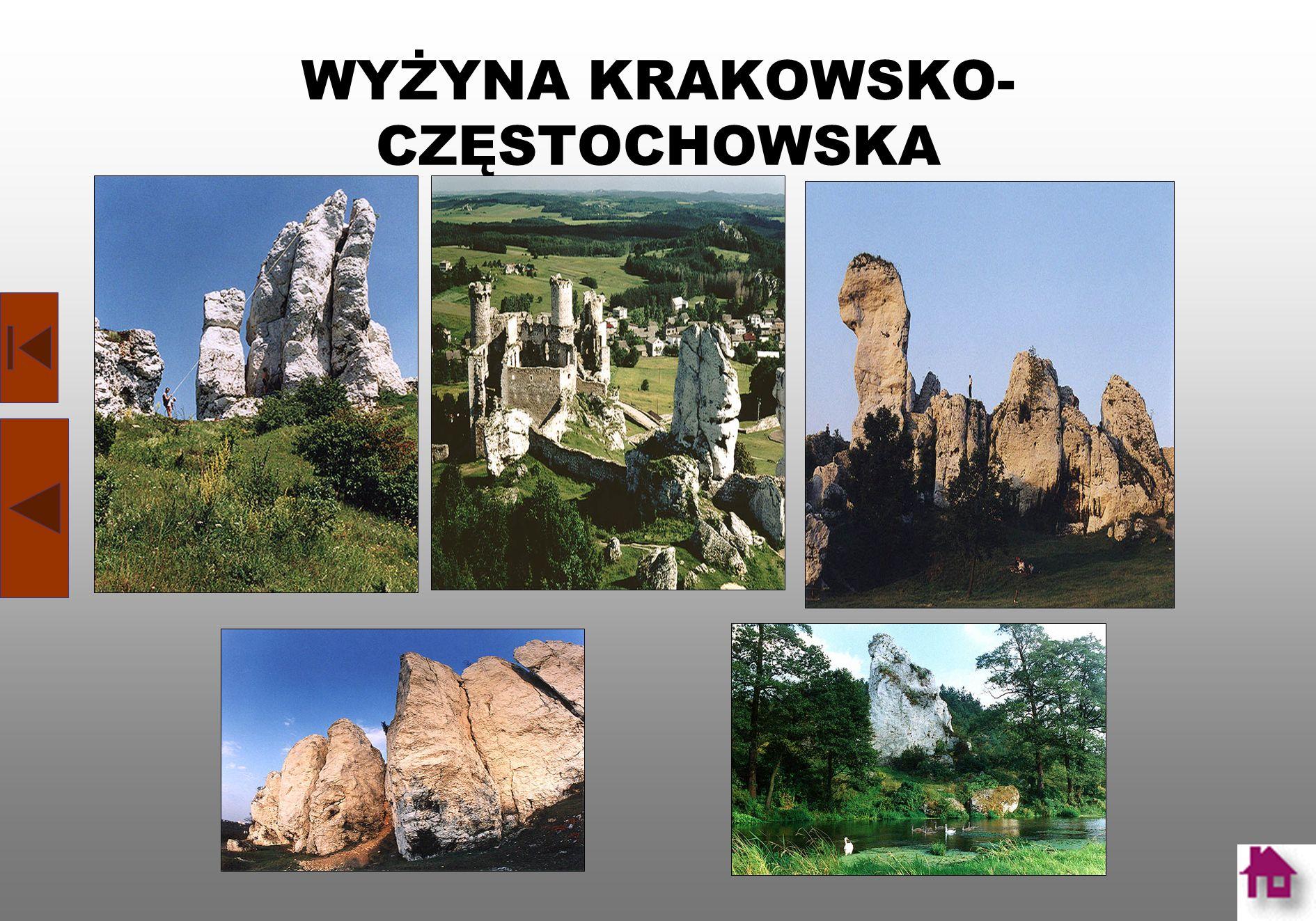 Plan Jasnej Góry: A - Brama Lubomirskich; B - Brama Matki Boskiej Królowej Polski; C - Brama Matki Boskiej Bolesnej; D - Brama wałowa (Brama Jagielloń