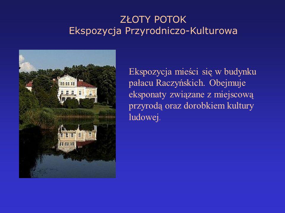 ZŁOTY POTOK Ekspozycja Przyrodniczo-Kulturowa Ekspozycja mieści się w budynku pałacu Raczyńskich. Obejmuje eksponaty związane z miejscową przyrodą ora