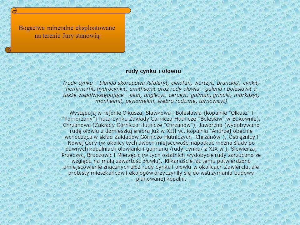 Bogactwa mineralne eksploatowane na terenie Jury stanowią: rudy cynku i ołowiu (rudy cynku - blenda skorupowa /sfaleryt, cleiofan, wurtzyt, brunckit/,