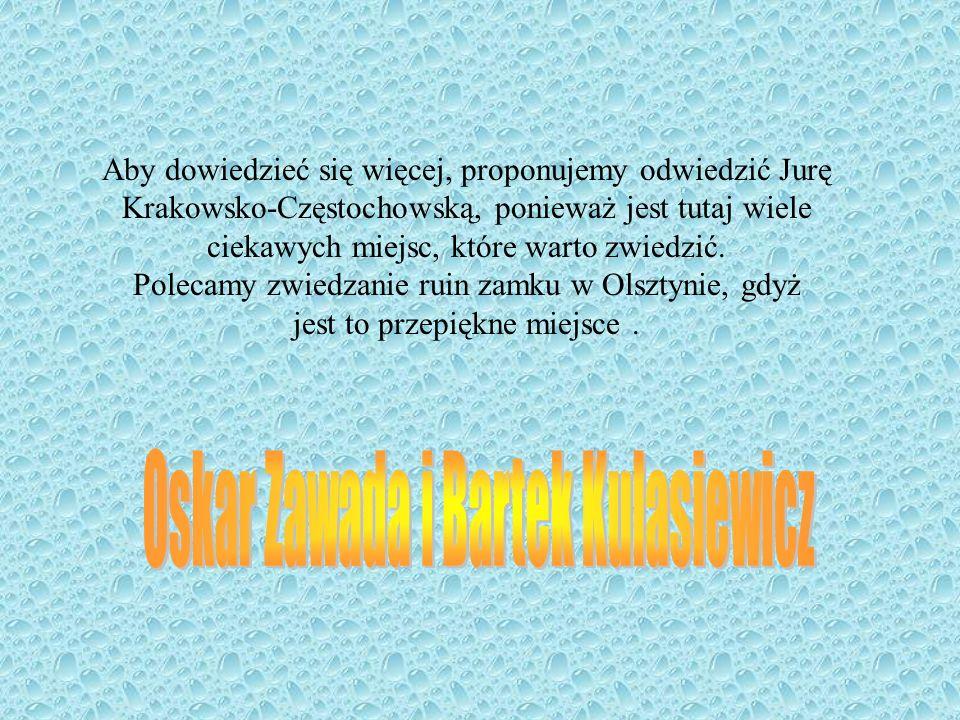 Aby dowiedzieć się więcej, proponujemy odwiedzić Jurę Krakowsko-Częstochowską, ponieważ jest tutaj wiele ciekawych miejsc, które warto zwiedzić. Polec