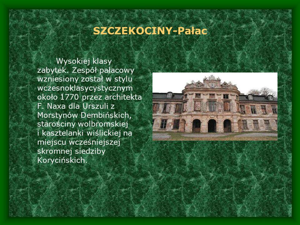 SZCZEKOCINY-Pałac Wysokiej klasy zabytek. Zespół pałacowy wzniesiony został w stylu wczesnoklasycystycznym około 1770 przez architekta F. Naxa dla Urs