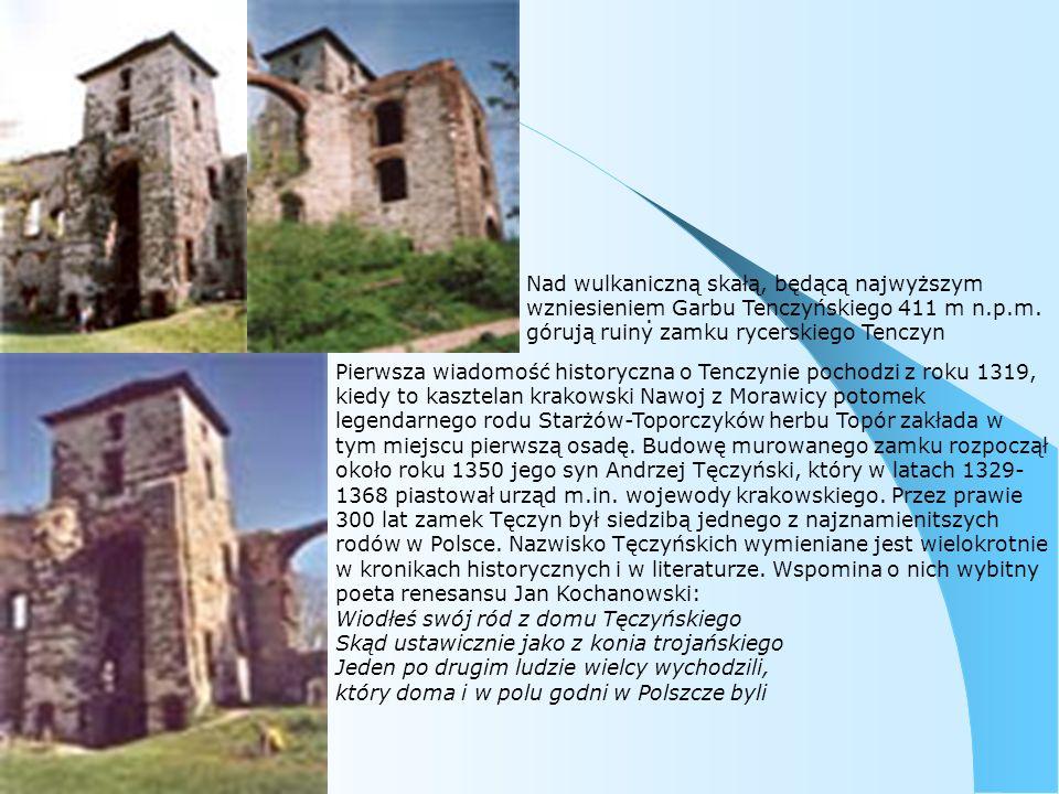 Pierwsza wiadomość historyczna o Tenczynie pochodzi z roku 1319, kiedy to kasztelan krakowski Nawoj z Morawicy potomek legendarnego rodu Starżów-Toporczyków herbu Topór zakłada w tym miejscu pierwszą osadę.