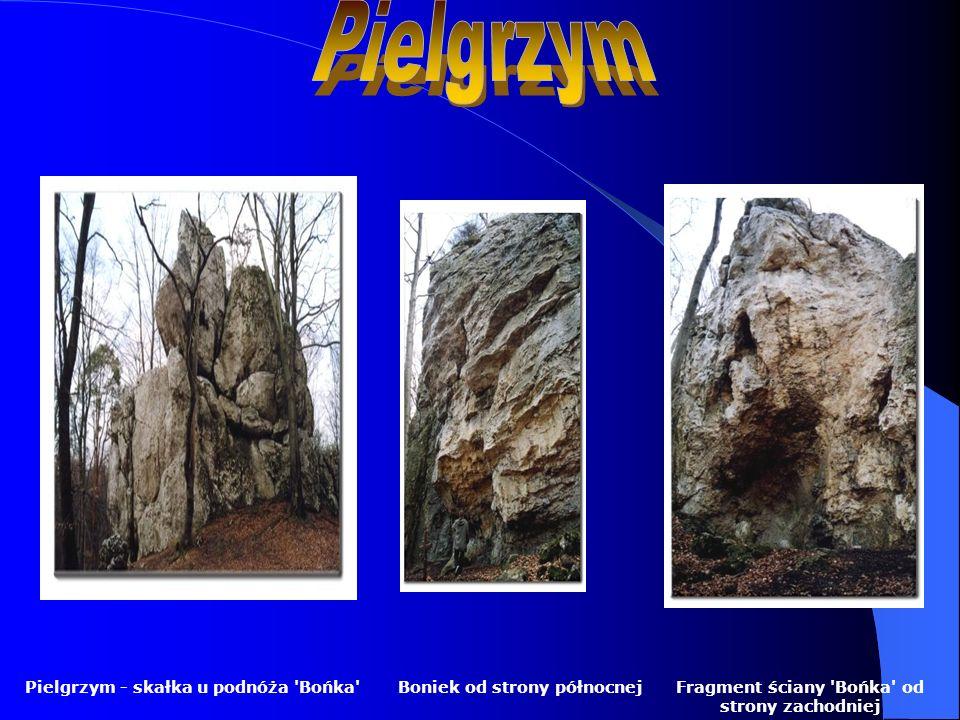 Boniek od strony północnejFragment ściany 'Bońka' od strony zachodniej Pielgrzym - skałka u podnóża 'Bońka'