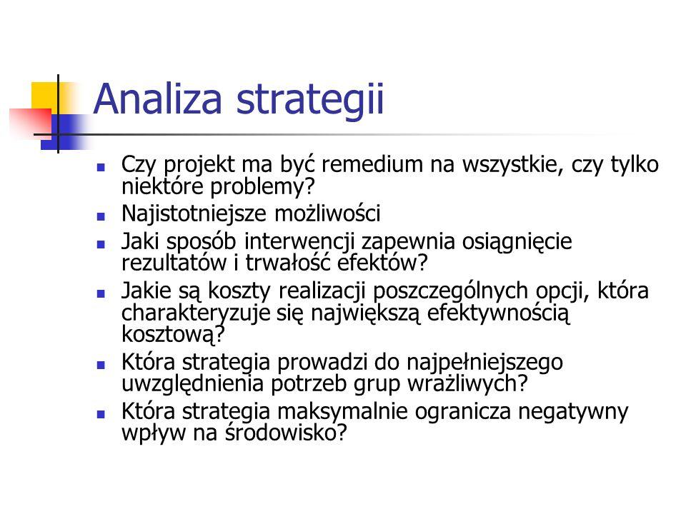 Analiza strategii Czy projekt ma być remedium na wszystkie, czy tylko niektóre problemy? Najistotniejsze możliwości Jaki sposób interwencji zapewnia o