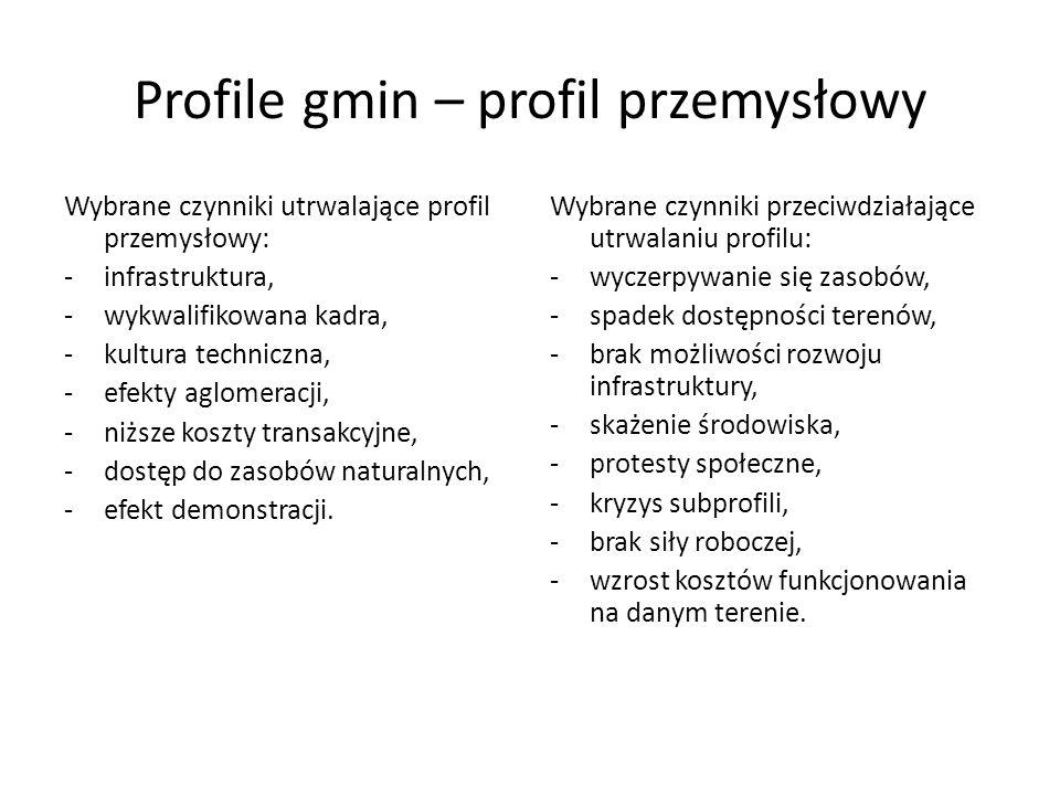 Profile gmin – profil przemysłowy Wybrane czynniki utrwalające profil przemysłowy: -infrastruktura, -wykwalifikowana kadra, -kultura techniczna, -efek