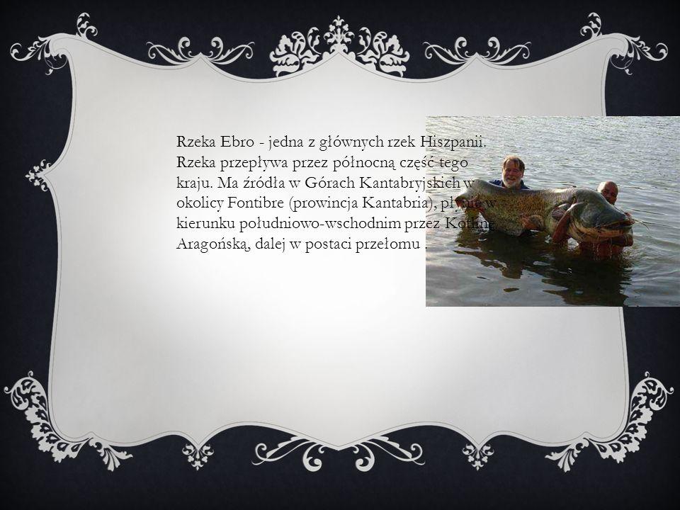 Rzeka Ebro - jedna z głównych rzek Hiszpanii. Rzeka przepływa przez północną część tego kraju. Ma źródła w Górach Kantabryjskich w okolicy Fontibre (p