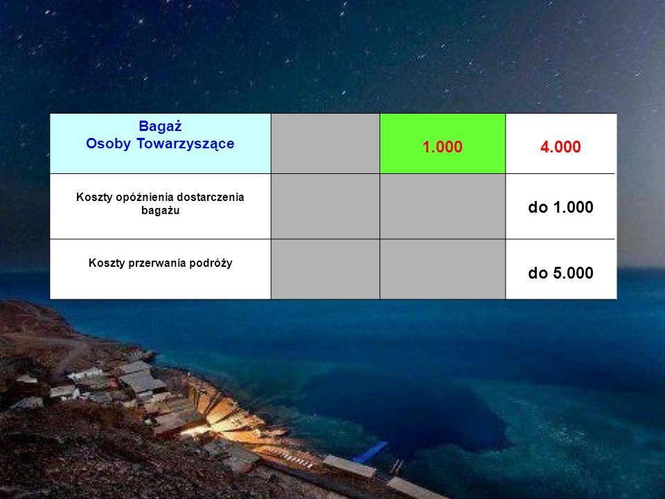 Bagaż Osoby Towarzyszące 1.0004.000 Koszty opóźnienia dostarczenia bagażu do 1.000 Koszty przerwania podróży do 5.000