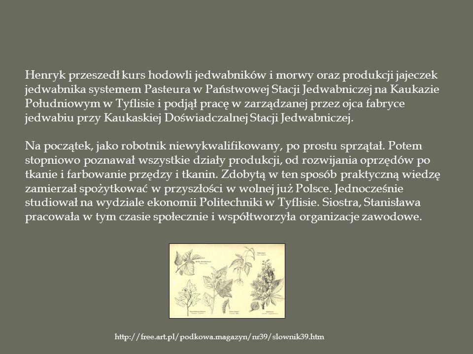 Henryk przeszedł kurs hodowli jedwabników i morwy oraz produkcji jajeczek jedwabnika systemem Pasteura w Państwowej Stacji Jedwabniczej na Kaukazie Południowym w Tyflisie i podjął pracę w zarządzanej przez ojca fabryce jedwabiu przy Kaukaskiej Doświadczalnej Stacji Jedwabniczej.
