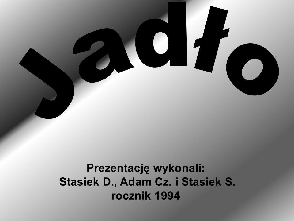 Prezentację wykonali: Stasiek D., Adam Cz. i Stasiek S. rocznik 1994