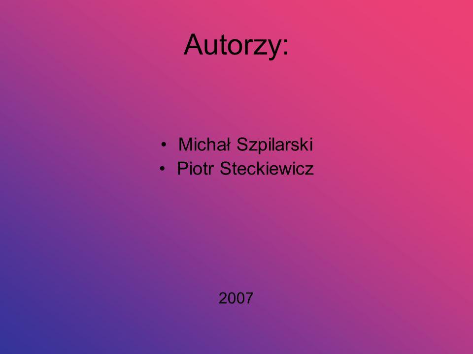 Autorzy: Michał Szpilarski Piotr Steckiewicz 2007