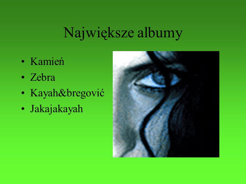 Największe albumy Kamień Zebra Kayah&bregović Jakajakayah