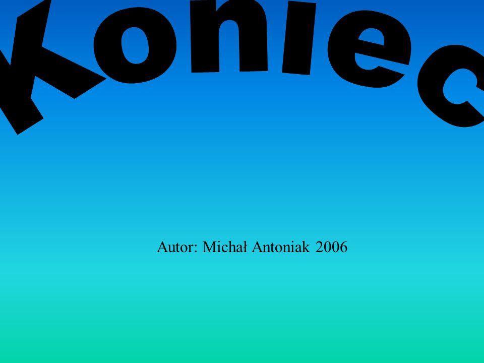 Autor: Michał Antoniak 2006