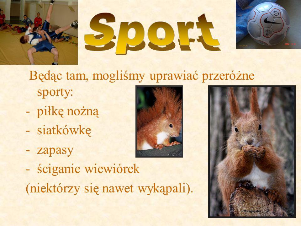 Będąc tam, mogliśmy uprawiać przeróżne sporty: -piłkę nożną -siatkówkę -zapasy -ściganie wiewiórek (niektórzy się nawet wykąpali).