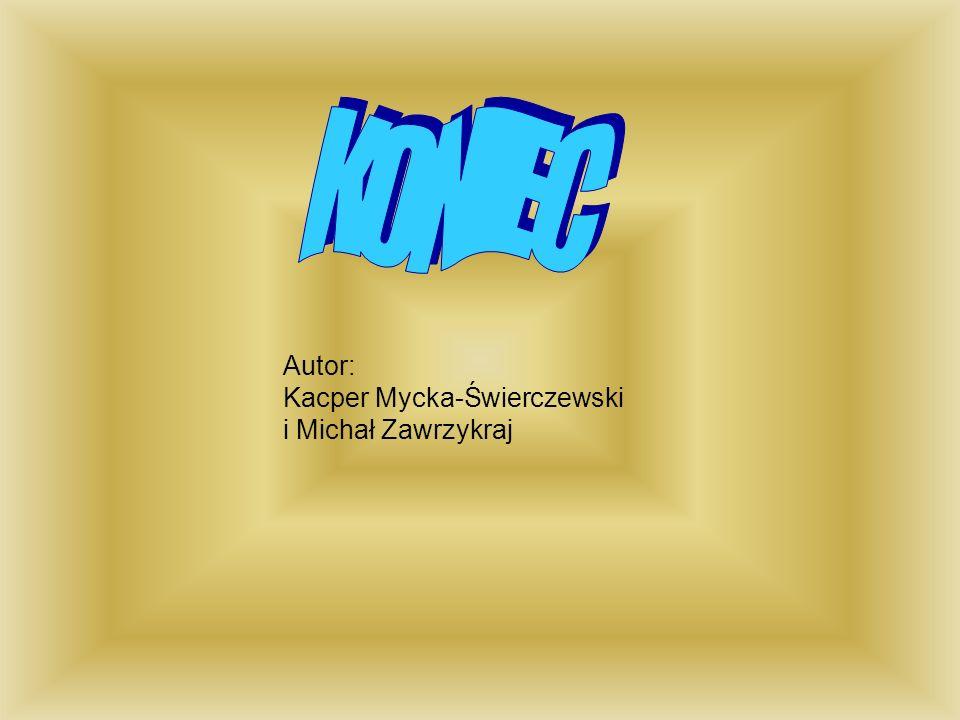 Autor: Kacper Mycka-Świerczewski i Michał Zawrzykraj