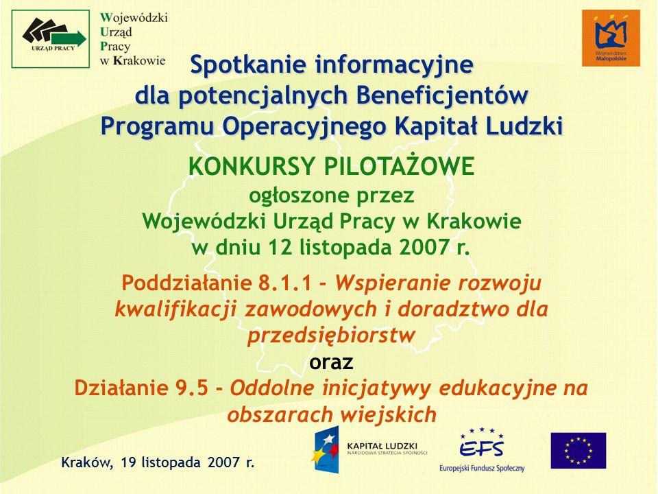 Spotkanie informacyjne dla potencjalnych Beneficjentów Programu Operacyjnego Kapitał Ludzki KONKURSY PILOTAŻOWE ogłoszone przez Wojewódzki Urząd Pracy w Krakowie w dniu 12 listopada 2007 r.