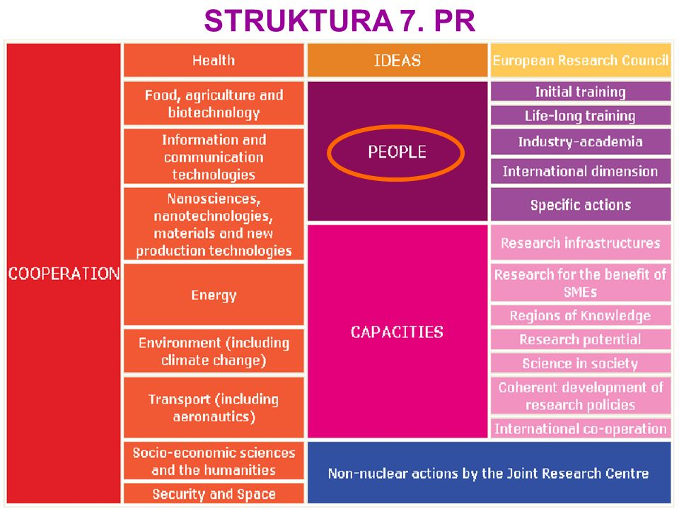 STRUKTURA 7. PR
