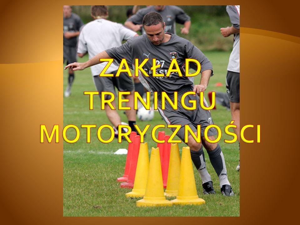 Profesor w Zespole Treningu w Grach Zespołowych, Katedry Motoryczności Sportowca w Akademii Wychowania Fizycznego we Wrocławiu.