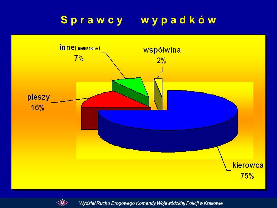 S p r a w c y w y p a d k ó w Wydział Ruchu Drogowego Komendy Wojewódzkiej Policji w Krakowie