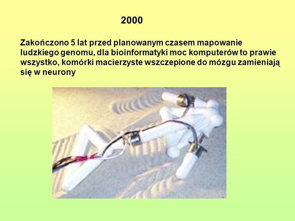 2000 Zakończono 5 lat przed planowanym czasem mapowanie ludzkiego genomu, dla bioinformatyki moc komputerów to prawie wszystko, komórki macierzyste ws