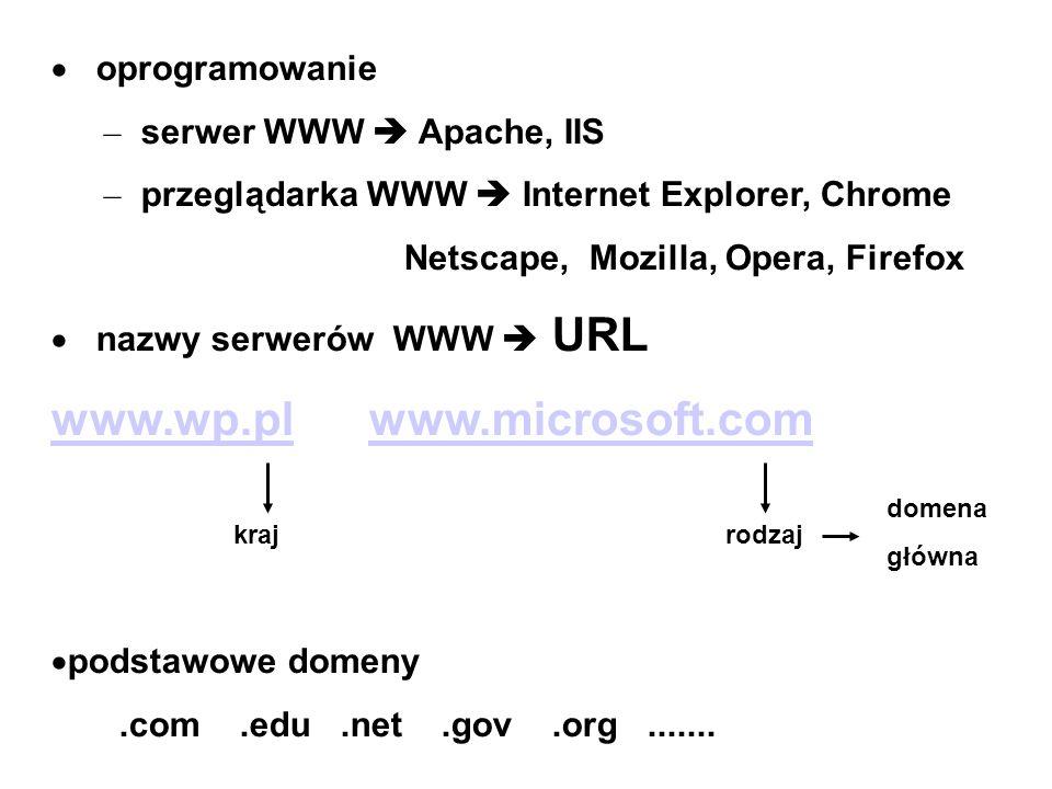 oprogramowanie – serwer WWW Apache, IIS – przeglądarka WWW Internet Explorer, Chrome Netscape, Mozilla, Opera, Firefox nazwy serwerów WWW URL www.wp.p