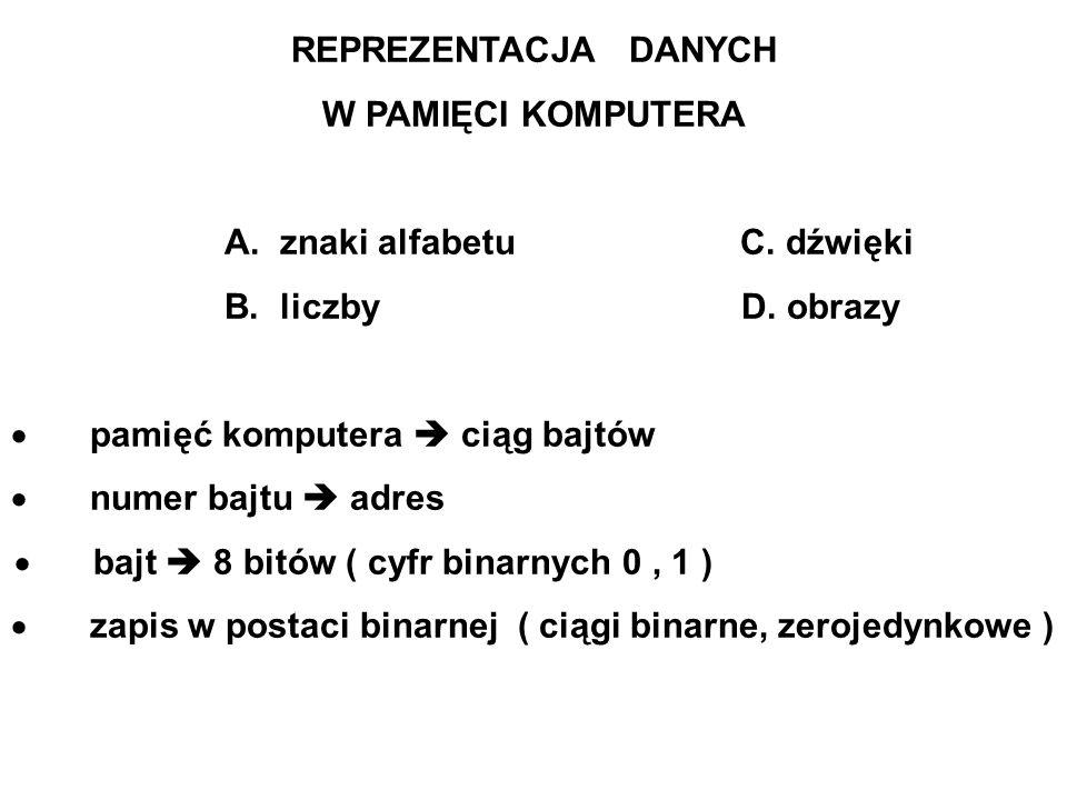 REPREZENTACJA DANYCH W PAMIĘCI KOMPUTERA A.znaki alfabetu C.