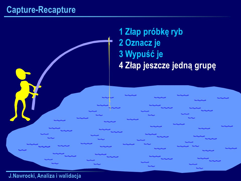 J.Nawrocki, Analiza i walidacja Capture-Recapture 1 Złap próbkę ryb 2 Oznacz je 3 Wypuść je 4 Złap jeszcze jedną grupę