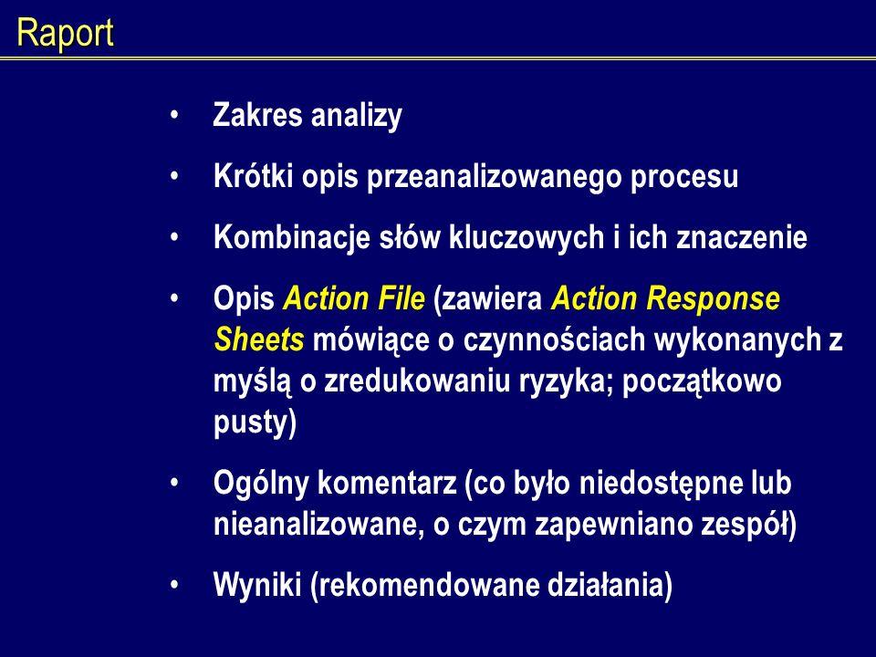 Raport Zakres analizy Krótki opis przeanalizowanego procesu Kombinacje słów kluczowych i ich znaczenie Opis Action File (zawiera Action Response Sheet